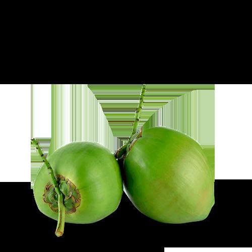 Coco Verde - Brasileirão Atacado